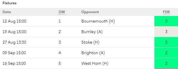 West Brom Opening Fixtures - 17/18 Season